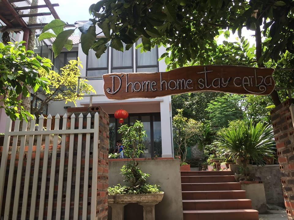 D'home Homestay Cát Bà là điểm đến vô cùng hấp dẫn
